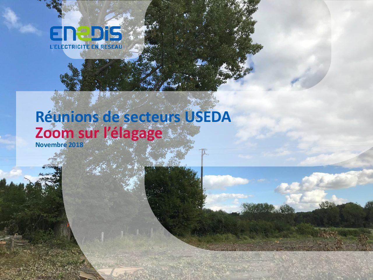 Présentation USEDA 2018 Elagage